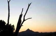 Arakwal Dreaming by Peter Wucherer. Streetscape / Landscapes – Adult